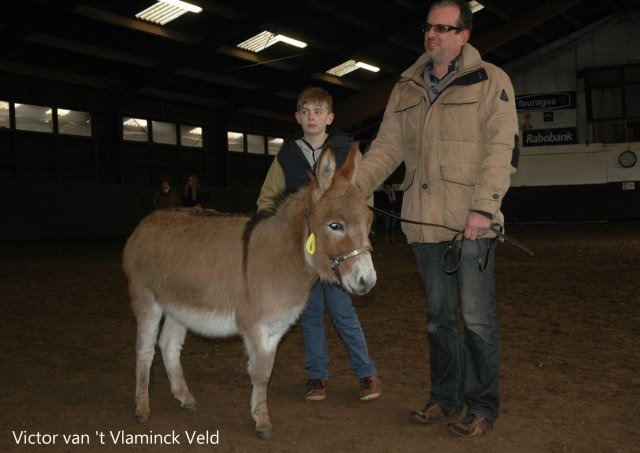 Victor_van__t_Vlaminck_Veld_152_5a0e9511f2df